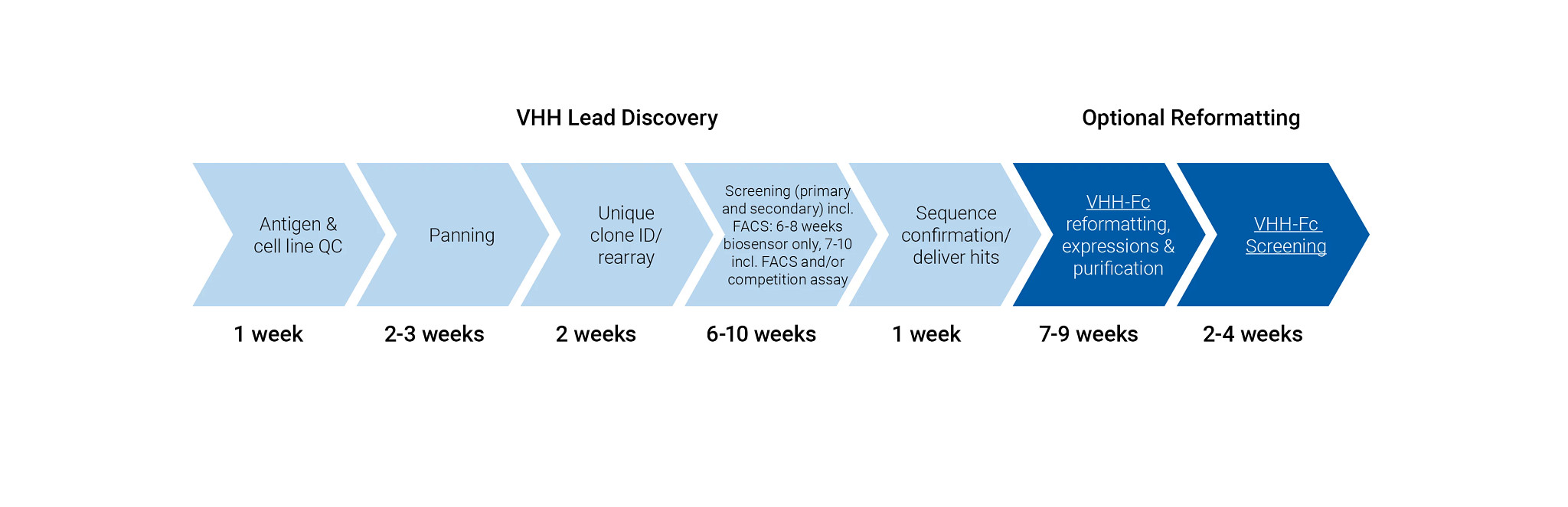 Typical workflows for the VHH Tungsten library includes reagent QC, panning, picking, sequencing, rearray, VHH screening, FACS cell binding, kinetics affinity, deliver hits, and optional reformatting.