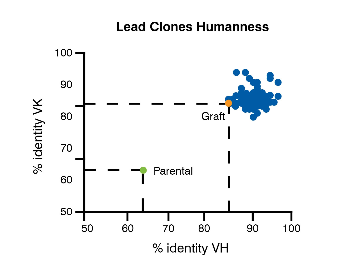 Tumbler humanized antibody technology produces identical replicas of human antibodies and far exceeds chimeric CDR grafting.