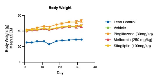 Line graph showing the standards of care on body weight in db/db mice. Data shows the dosage of the test article and how it affected body weight on a daily basis.