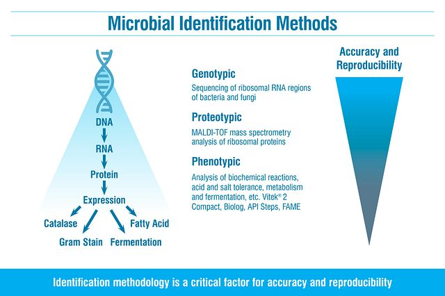 Technology options for microbial ID at a fungal and bacterial identification lab