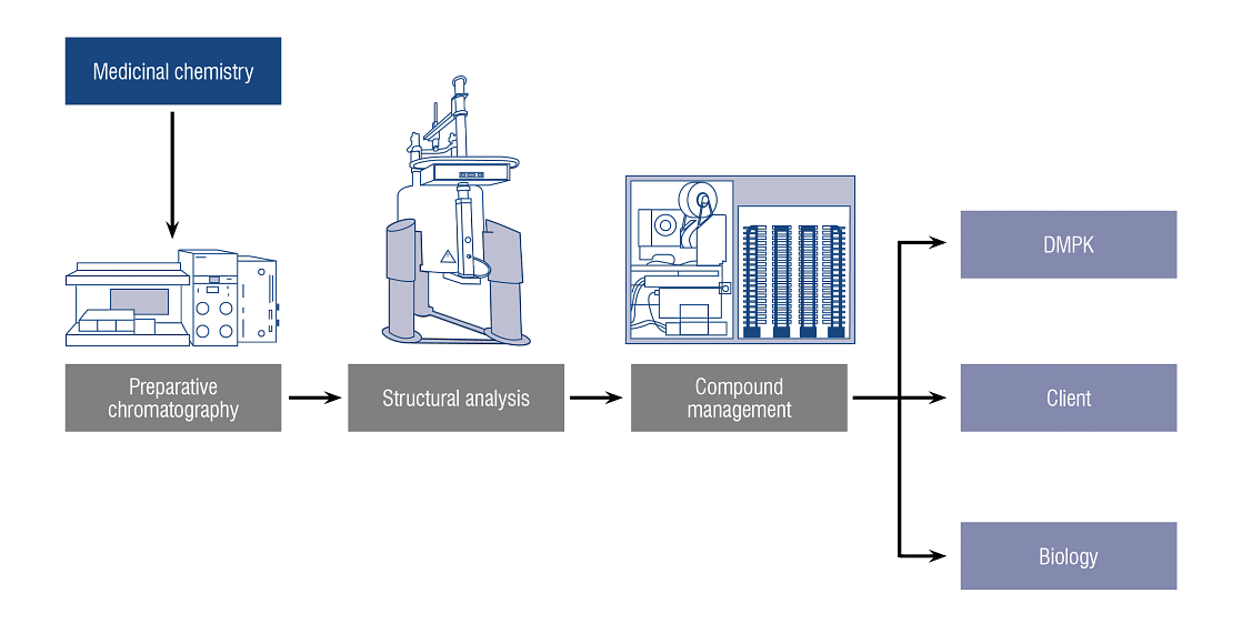 The Charles River analytical chemistry team offers an integrated approach, partnering with medicinal chemistry, biology and compound management to deliver synchronized transitions for crude compound to assay data, providing optimal efficiency.