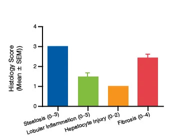 A bar graph showing the histology scores for the ob/ob mouse model