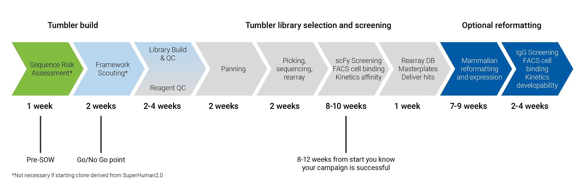 Tumbler antibody humanization campaigns start with a sequence risk assessment and include go/no go decision points along the way.