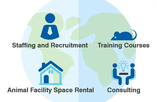 insourcing solutions infographic