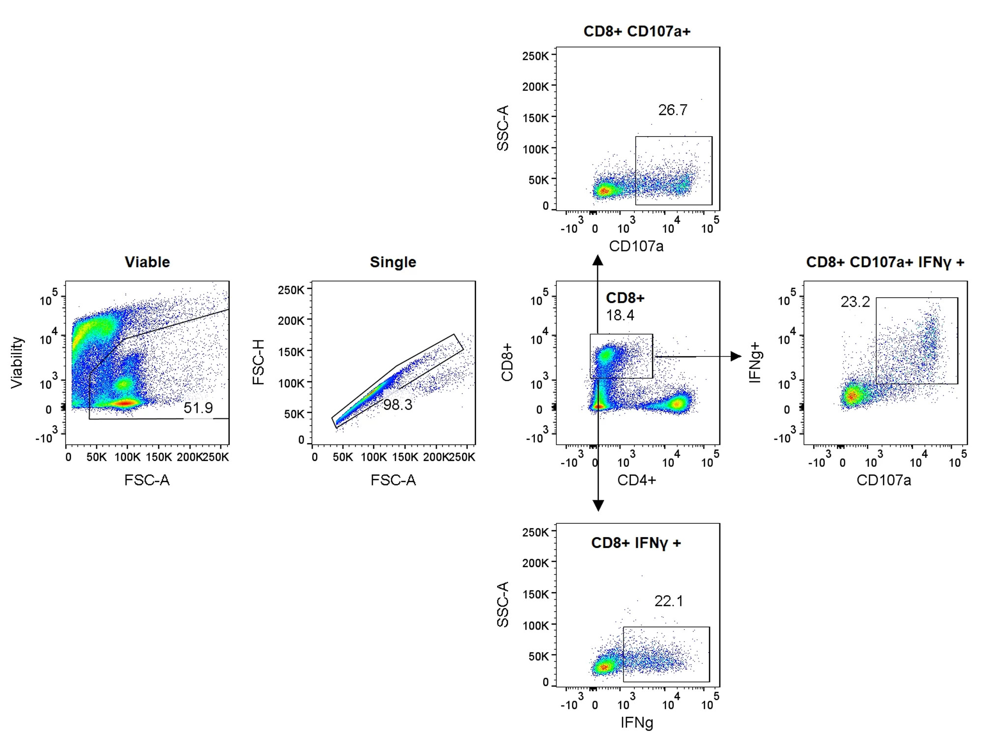Graphs showing how Anti-LAG3 antibody dose-dependently enhances CD8+ T cell activation