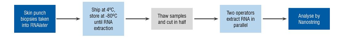 RNA analyzed using NanoString nCounter technology on a 4200 TapeStation to assess RNA integrity.