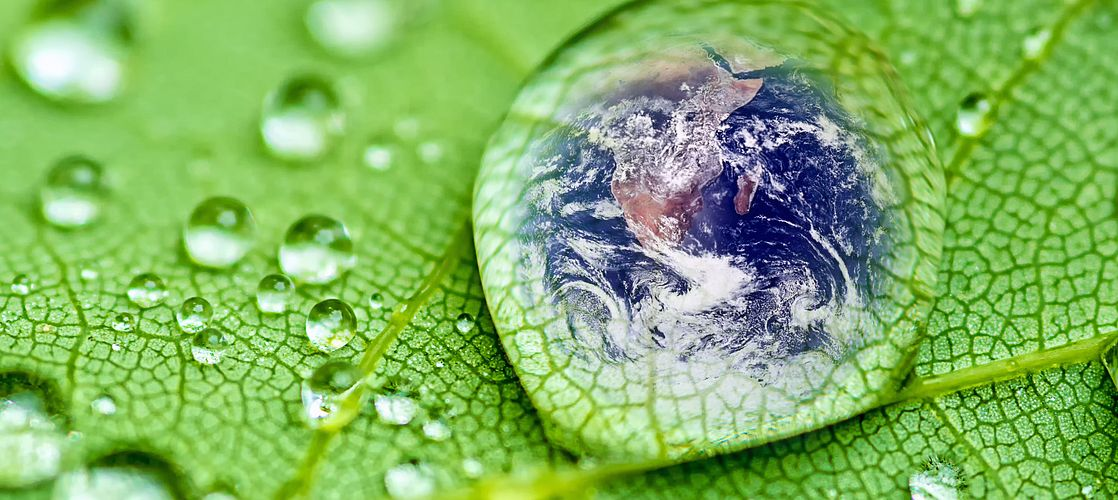 We are committed to conducting our business in an environmentally sustainable manner.
