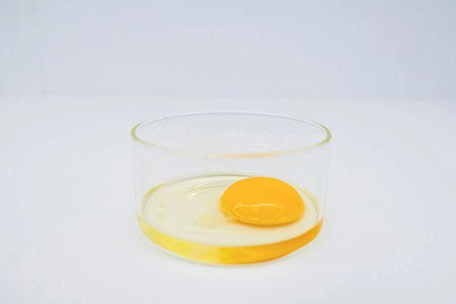 egg in a petri dish