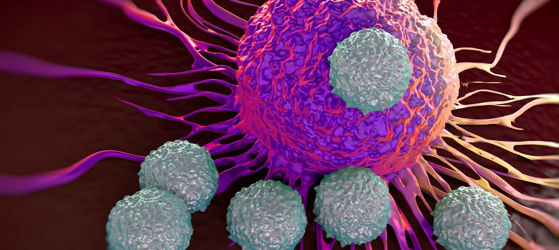 Expanded 3D In Vitro Screening for Cancer Therapeutics