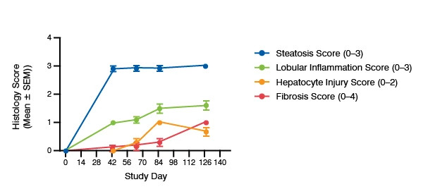 Line graph showing the histology score for the CDAA NASH mouse model.