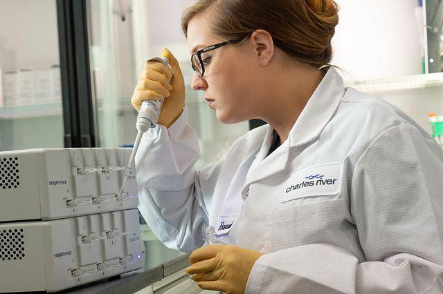 endotoxin testing technician
