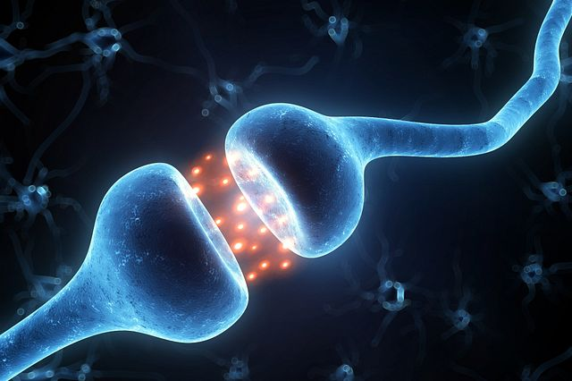 An image of the synaptic cleft of two neurons firing to demonstrate neuronal electrophysiology studies.