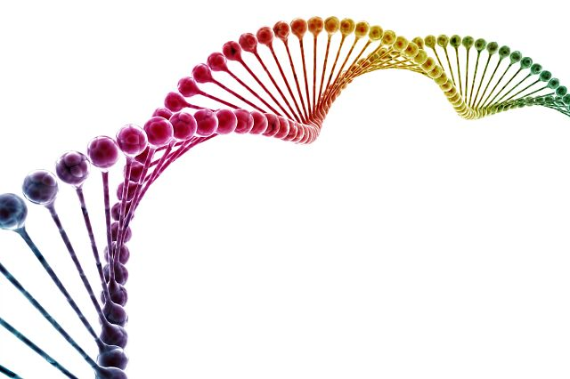DNA double helix multi color isolated on white background