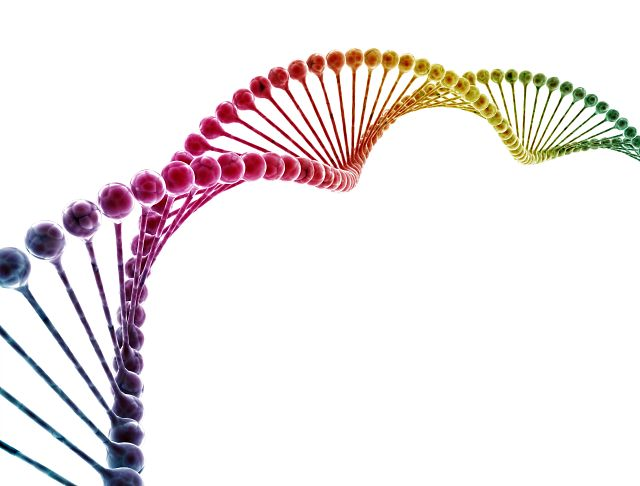 rainbow colored DNA helix strand on a white background