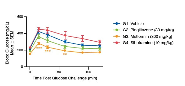 Line graph showing the time Post Glucose Challenge data for the C57BL/6J DIO Mice model