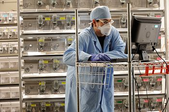 Scientist wearing full PPE in front of rodent cages, working on a computer.