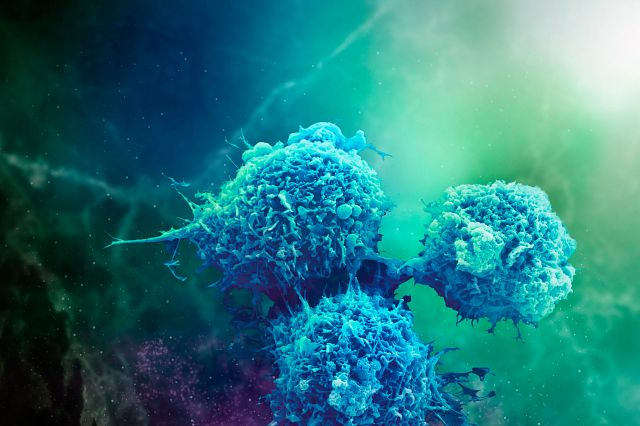 Macrophage cell assay
