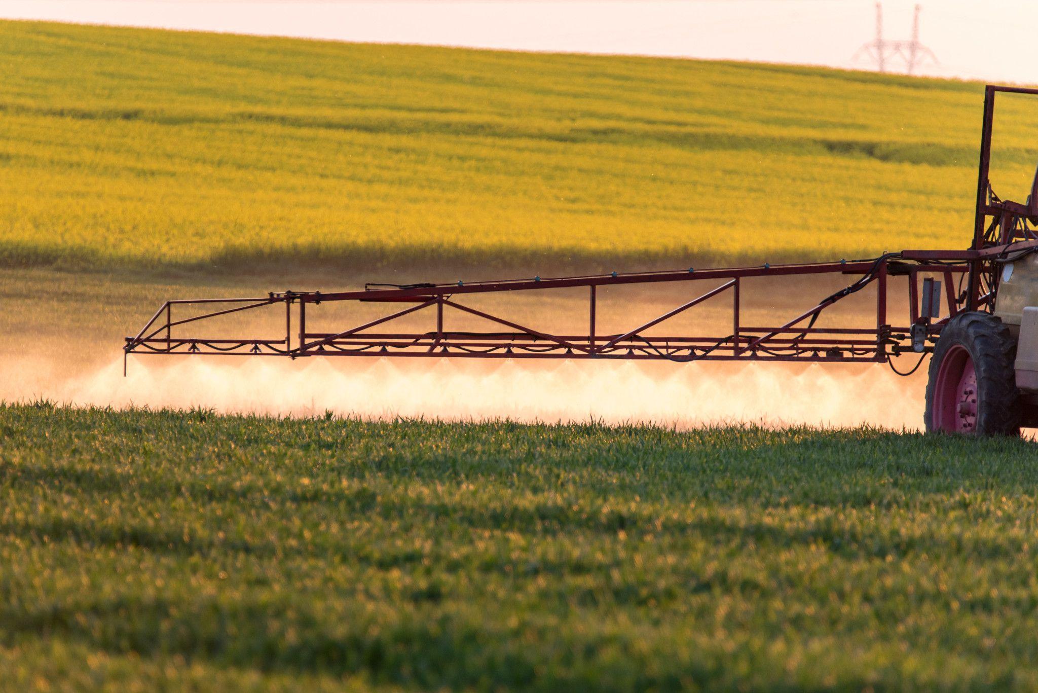 spraying machine working on the green field