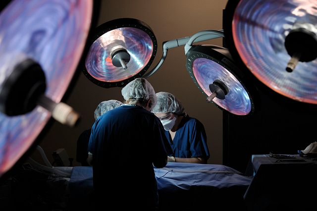 Veterinary surgeons performing surgery in a preclinical drug development surgical suite
