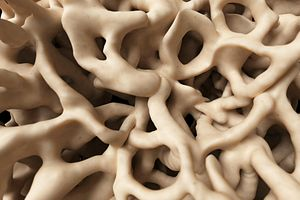 3d medical science human bone healthy skeleton close-up microscopic sponge structure anatomy tissue