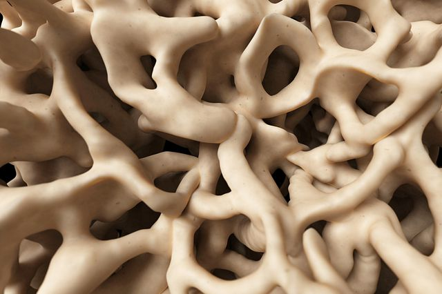 medical illustration of the healthy bone structure