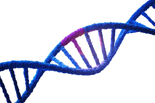 DNA double helix with a highlighted mutation in pink.