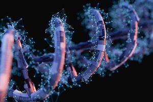 黑色背景下紫色 DNA 双螺旋的三维渲染
