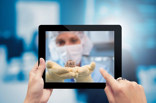 hands holding an ipad looking at an image of a gowned technician holing a mouse with gloved hands