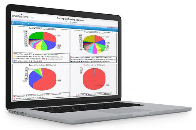 laptop with screening showing tracking and trending pie charts