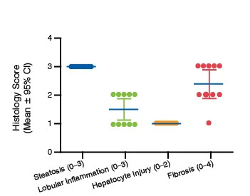 A scatter plot showing the histology scores for the ob/ob mouse model