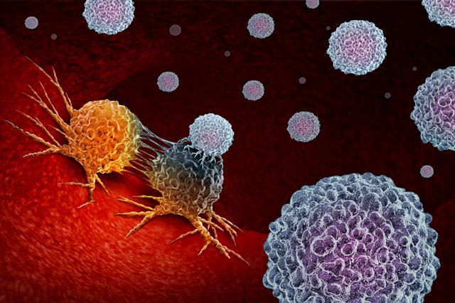 Cellular therapies such as CAR-T cells target tumor cells. Charles River offers in vivo models for cell therapy testing to confirm efficacy.