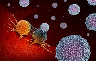 Cells, tumor cell